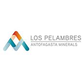 Logo Los Pelambres